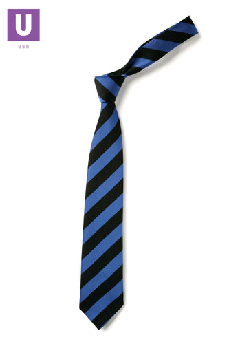 Black & Royal Broad Stripe Tie