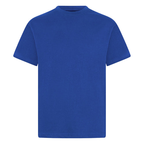Royal Blue P.E. Crew Neck T-Shirt (Twin Pack)