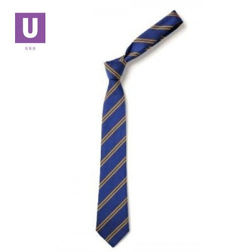 Royal & Gold Double Stripe Tie