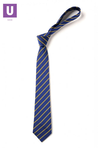 Royal & Gold Thin Stripe Tie
