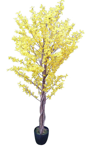 5' FORSYTHIA TREE YELLOW