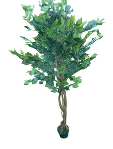 Artificial Plants - UK-Gardens 6ft Artificial Ficus Tree - 1.8m Ficus Benjamina Weeping Fig Plant In a Pot