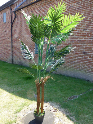 Howea Forsteriana Artificial Trees - 1.8m 6ft Artificial Kentia Palm Tree - Indoor Office House Plant