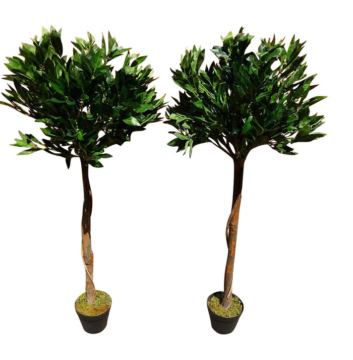 Artificial Plants - Set of 2 - 0.9m 3ft Buxus Bay Trees-Indoor Office House Plant