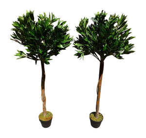 Artificial Plants - Set of 2 - 1.2m 4ft Buxus Bay trees - Indoor Office House Plant