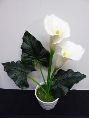 Artificial Potted Plants LED Light Up Cream Calla Lily 49cm In White Ceramic Pot