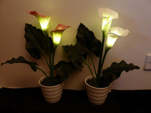 Artificial Potted Plants LED Light Up Pink Calla Lily 49cm In White Ceramic Pot