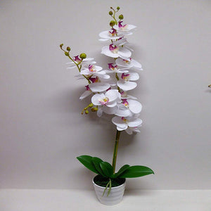 95cm Artificial White and Pink Orchid Flower In A White Pot - Artificial Potted Plants