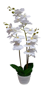 Artificial 85cm White Orchid Flower In A White Pot - Artificial Potted Plants