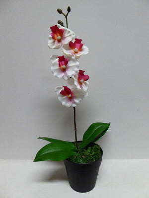 40cm Artificial Pink or White Orchid Flower In A Pot - Artificial Potted Plants (White)