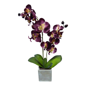 UK-Gardens Large Artificial Potted Plant - 60cm Burgundy Orchid in Grey Stone Pot - Stunning Houseplant