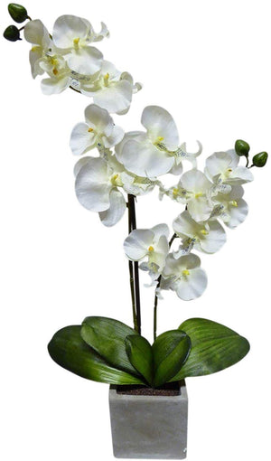 Large Artificial Potted Plant - 60cm White Orchid in Grey Stone Pot - Stunning Houseplant