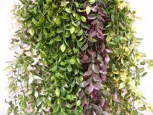 Artificial Plants - 65cm Large Green Ruscus Plant Foliage - Hanging Trailing