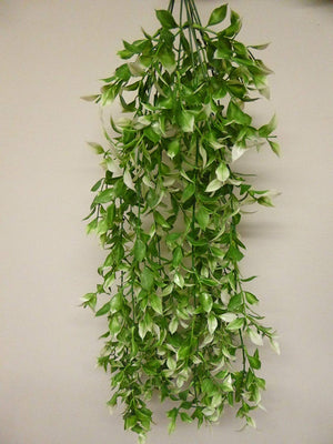 Artificial Plants - 65cm Large Green Variegated Ruscus Plant Foliage - Hanging Trailing