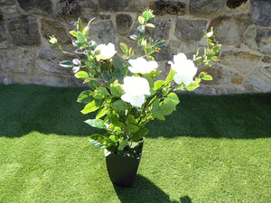 Artificial Potted Plant - 80cm Large White Rose Tree Bush In A Black Plastic Pot - House Office Indoor Plants