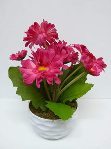 Artificial Potted Plants 30cm Gerbera's in a White Dimple Pot - 2 Colours (Pink)