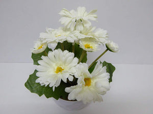 Artificial Potted Plants 30cm Gerbera's in a White Dimple Pot - 2 Colours (White)