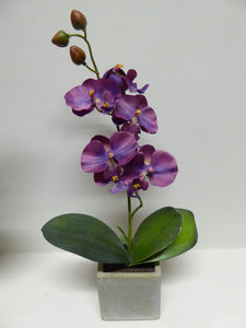 40cm Purple Orchid in Stone Pot