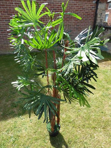 1.5M 5ft Artificial Cyprus Grass Tree In A Pot - Artificial Potted Trees Plants