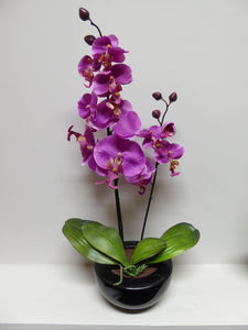 46cm Pink Orchid in Round Black Pot