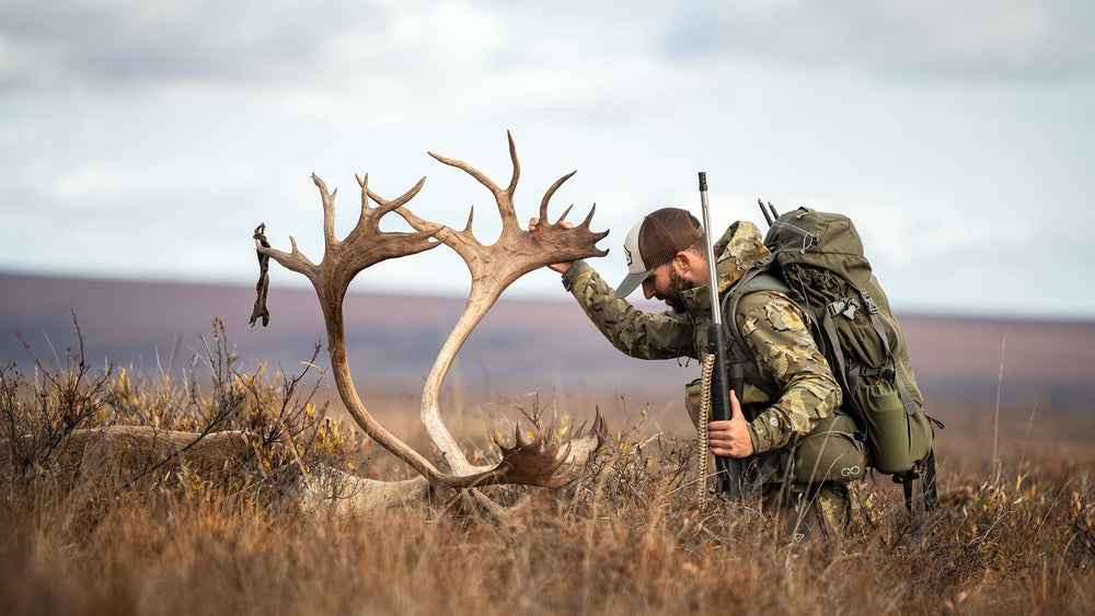 Hunting Lethality — How Do Animals Die?