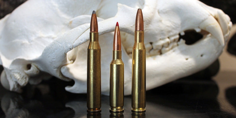 .25-06 Remington (L) vs 6.5 Creedmoor vs .270 Winchester (R)