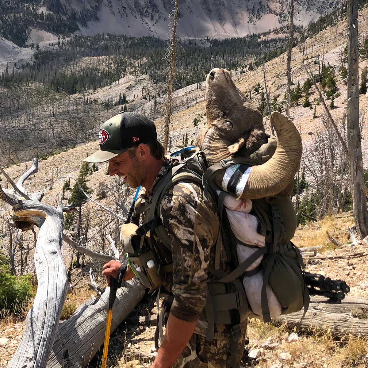 3200 Pack System with Bighorn Sheep