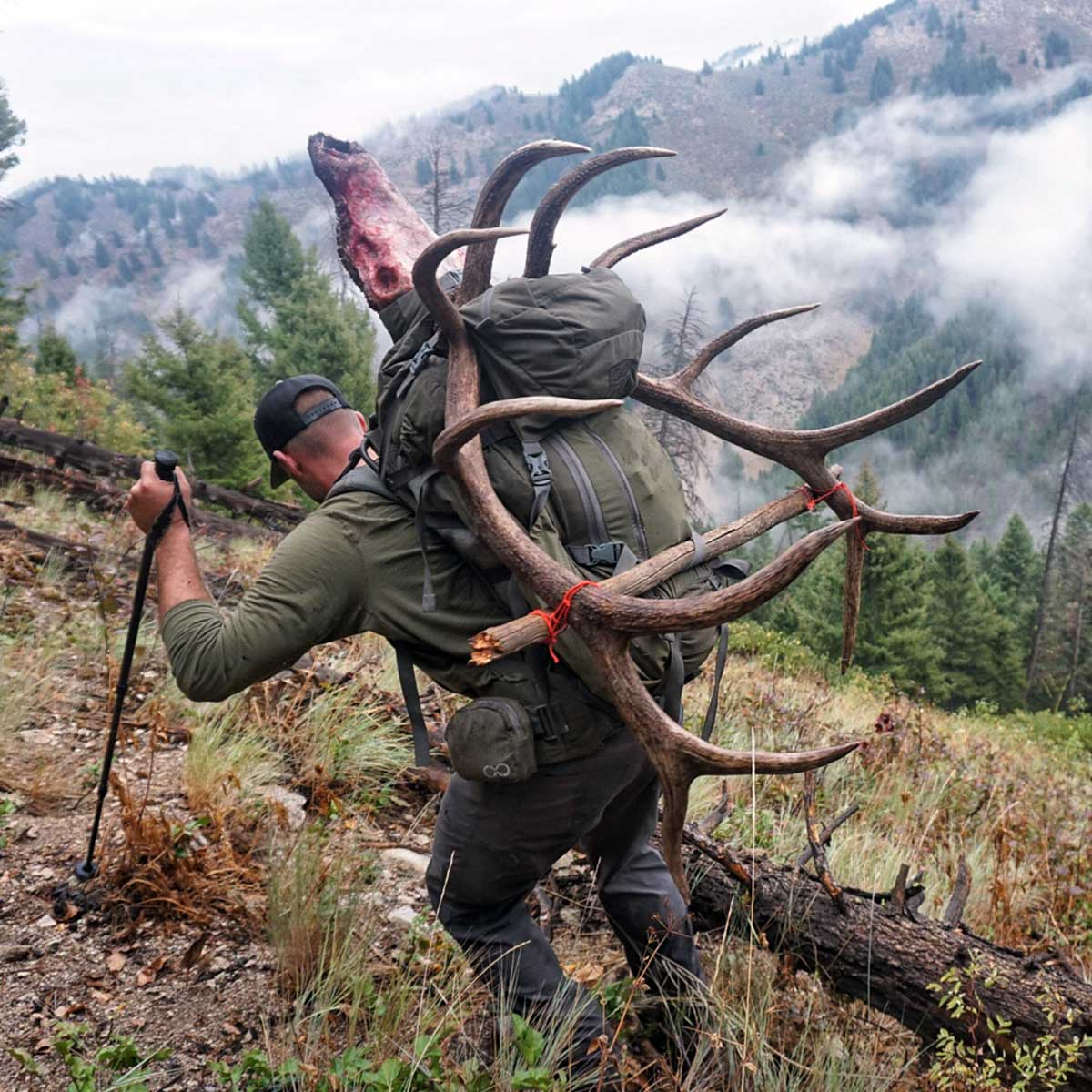 4800 Pack System with Bull Elk