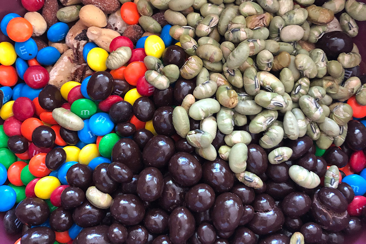 Ingredients of Homemade Trail Mix
