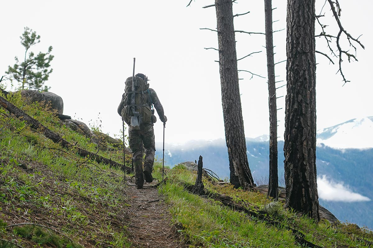 Hiking in Bear Country