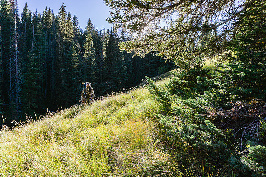 Hiking in A Hunting Paradise