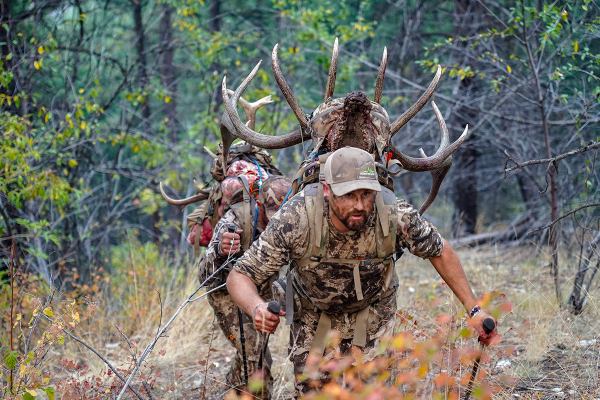 Hunter Packing-Out A Bull Off-Trail