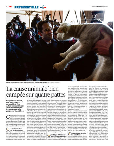 Cause animale, bête de campagne / The New York Times. 04 avril 2017