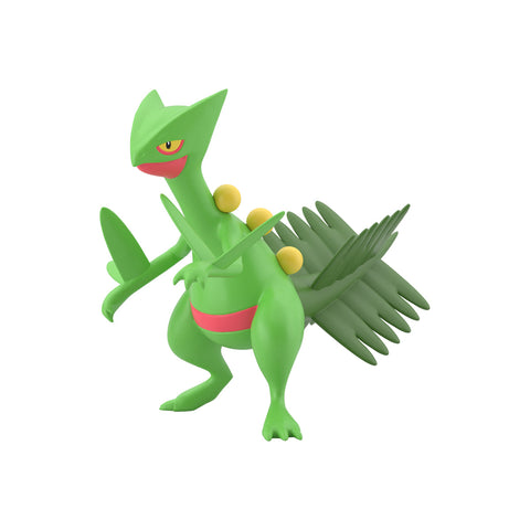 Pokemon Scale World Hoenn Sceptile
