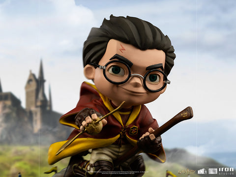 Harry Potter at the Quidditch Match Harry Potter MiniCo Illusion