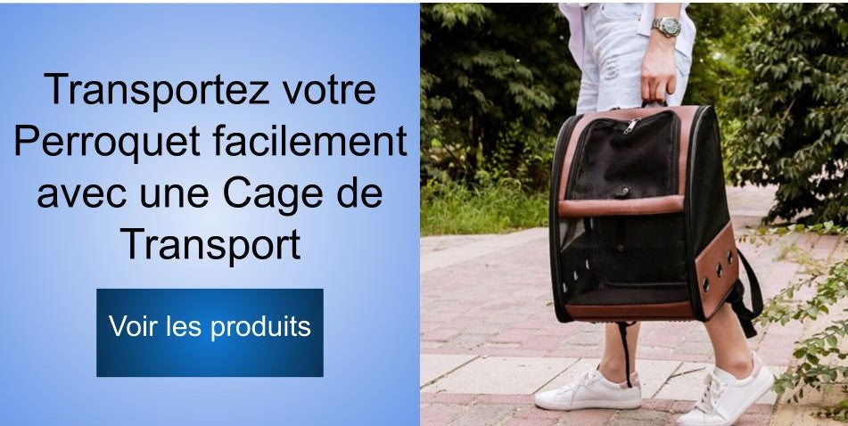 Collection de cages de transport perroquet