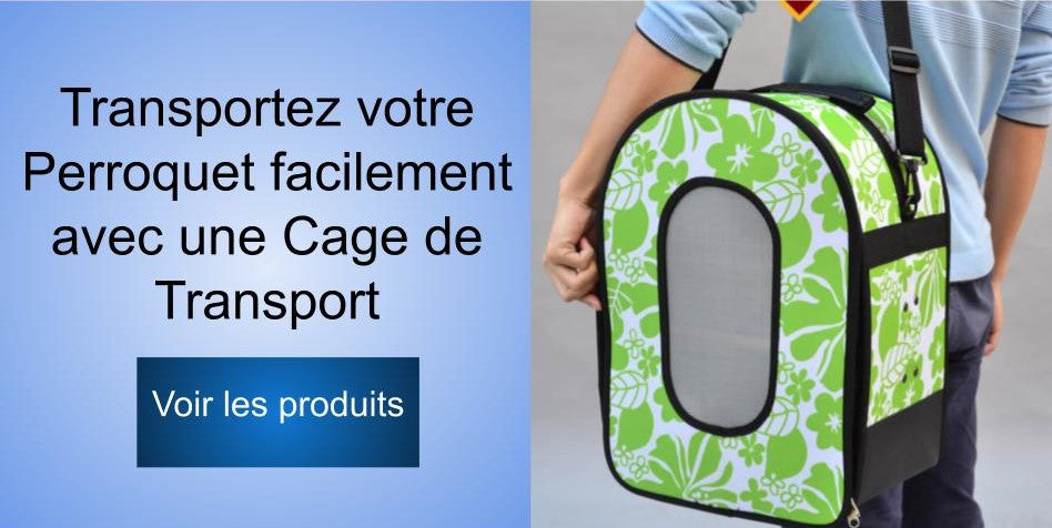 Cage de transport perroquet