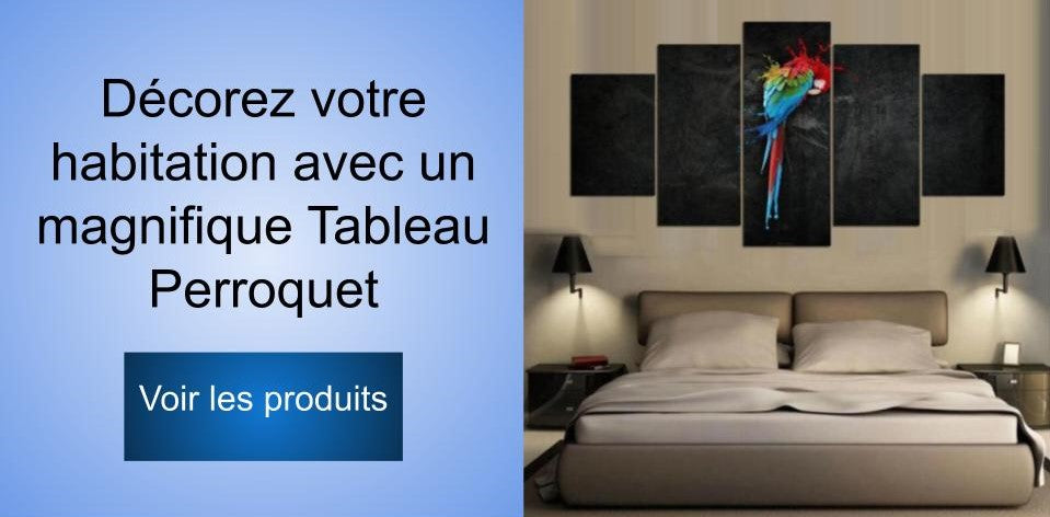 Collection de tableaux perroquet