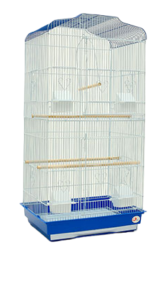 Cage Perroquet pas Cher | Perroquet-Royal