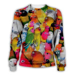 Pull Famille Perroquet Multicolore | Perroquet-Royal