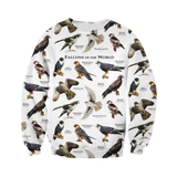 Pull Oiseaux | Perroquet-Royal