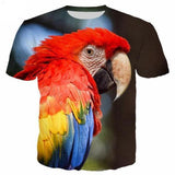 T-Shirt Perroquet Ara de Profil | Perroquet-Royal