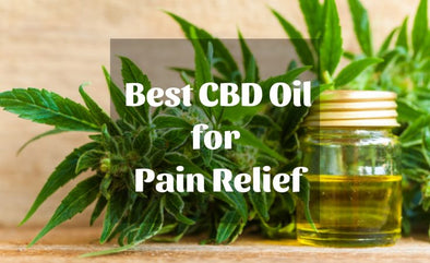 11 Benefits of CBD Oil and What Is It & What Does It Do?