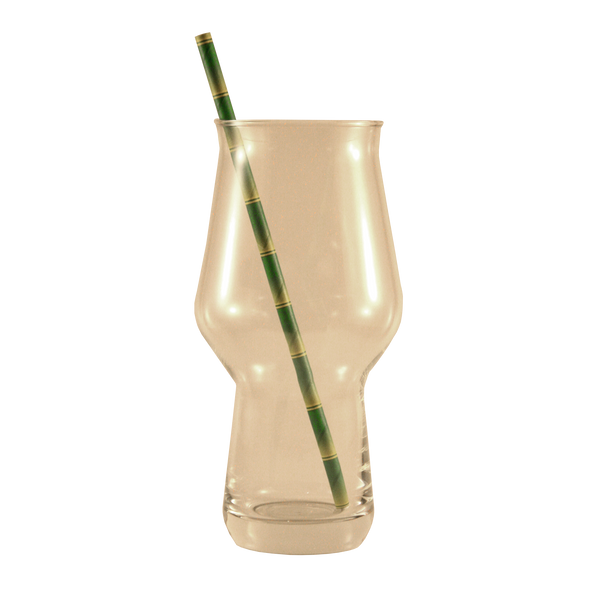Biodegradable Paper Straws 10 Pack