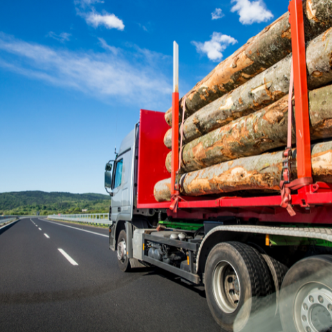 Global Supply & Timber Shortage 2021: truck with logs on it