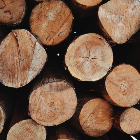 Pros and Cons of Timber Fecning - Image shows piles of timber logs