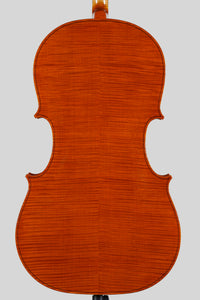 Roberto Cavagnoli cello $POA