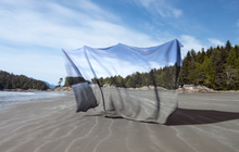 "Load image into Gallery viewer, Alex Purcell ""Tofino"" (2020)"