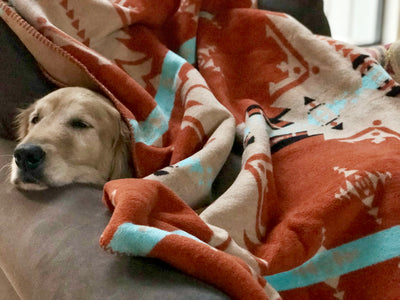 Beacon Blankets Make Warm Friends