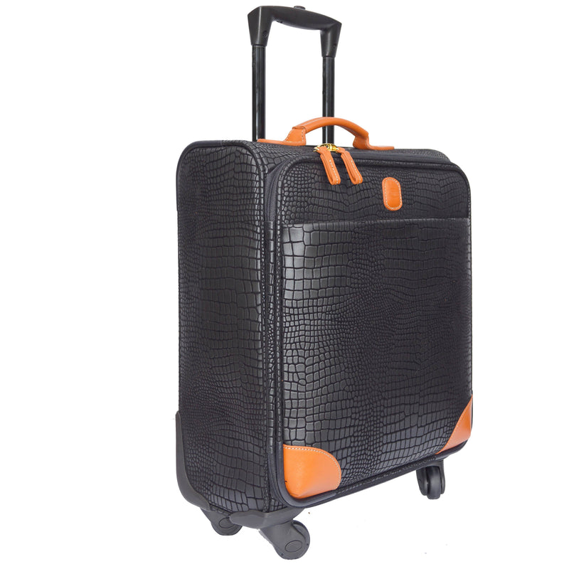 Mysafari 30 Inch Expandable Spinner